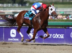 2016 Breeders' Cup Filly & Mare Sprint