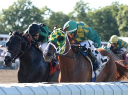 Bet on The Haskell Invitational Handicap