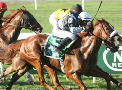 Bet on The Joe Hirsch Turf Classic Stakes