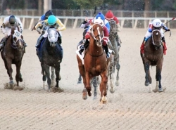 Southwest Stakes