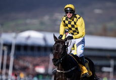 Cheltenham Gold Cup 2021 Picks