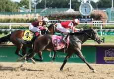 Kentucky Derby 2019 Contenders And Long Shots