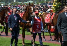 2020 Melbourne Cup Picks