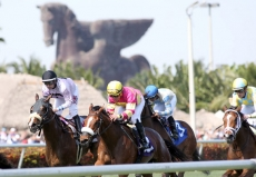Pegasus World Cup Odds And Best Bet Recommendations