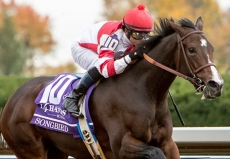 Picks And Preview For The Alabama Stakes