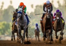 Preakness Stakes 2019 Race Contenders And Odds