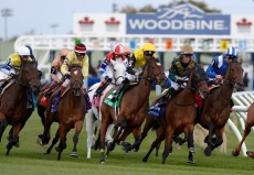 2020 Queen's Plate Picks