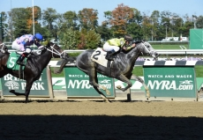 Travers Stakes Picks For Saratoga Saturday