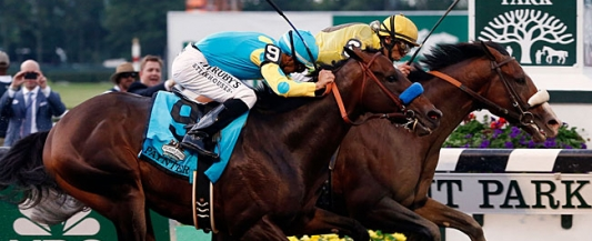 Advantage Wagering The Guide To Horse Betting Online